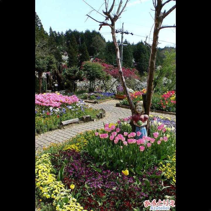 休憩所のお庭