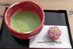 (奥山田のしだれ桜)お抹茶300円