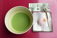 (岡崎公園の桜)お抹茶450円