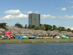 岡崎公園までやってきました