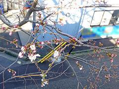 岡崎公園前駅のホームから