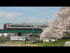 名鉄特急1700系と桜