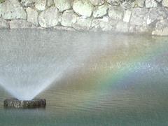 噴水に虹が!!