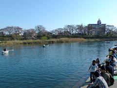 岡崎城下舟遊びその2(手漕ぎボート体験)