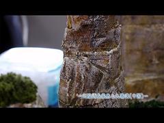 中国の世界遺産に関しては、2013年のビデオをご覧ください。その2